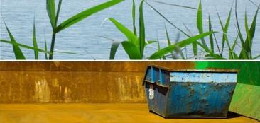 Bildcollage: Schilf am Wasser und Abfallcontainer
